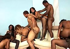 Black chicks with big juicy asses take part in an orgy