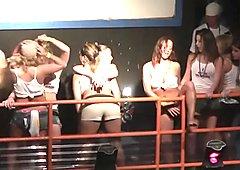 Wild girls showing their tits - DreamGirls