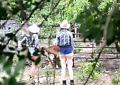 Sex Obsessed Farm Girls