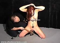 Amateur bdsm and tit torture of cute sub Chaos