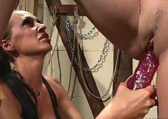 Mandy Bright pump the cunt of tied babe with dildo